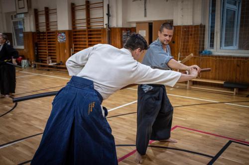 iaido-seminar-yan-de-haan-bratislava-slovakia-2019-21